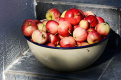 Bowl with ripe apples Royalty Free Stock Photography