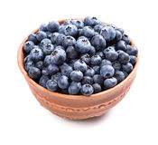 Bowl of ripe blueberries isolated on white Stock Photos