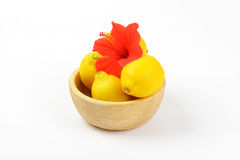 Bowl of ripe lemons and red hibiscus bloom Royalty Free Stock Images