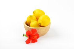 Bowl of ripe lemons and red hibiscus bloom Stock Photos