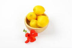Bowl of ripe lemons and red hibiscus bloom Royalty Free Stock Photography