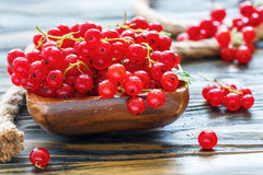 Bowl with ripe red currants. Royalty Free Stock Images