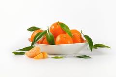 Bowl of ripe tangerines Royalty Free Stock Photo