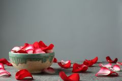 Bowl with rose petals on grey table. Space for text royalty free stock photos