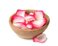 Bowl with rose petals on white stock photos