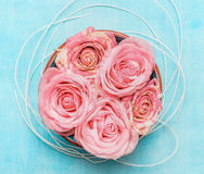 Bowl with roses on blue background Royalty Free Stock Image