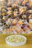 Bowl of Royal Jelly in capsules with blurred background of worke. R bees working in honeycomb, premium bee products used as dietary supplement Stock Image