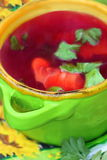 Bowl with russian beets soup Stock Photos
