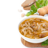 Bowl of Russian cabbage soup (shchi). Bowl of traditional Russian cabbage soup (shchi) with wild mushrooms, isolated on white Royalty Free Stock Images