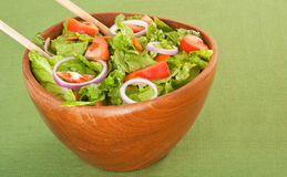 Bowl of Salad Stock Photography