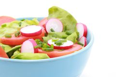 Bowl of salad Royalty Free Stock Images