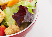 Bowl of Salad Stock Image