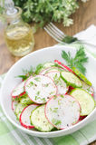 Bowl of salad with cucumber, radish and dill closeup vertical. Bowl of salad with cucumber, radish and dill closeup Royalty Free Stock Photography