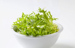 Bowl of salad greens Stock Images