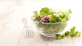 Bowl of salad. Healthy eating Stock Images
