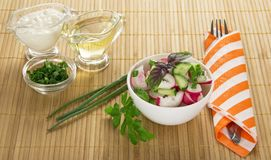 The bowl with salad, sour cream, sunflower oil Stock Images