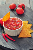 Bowl of salsa with tortilla chips Royalty Free Stock Image