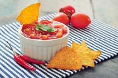 Bowl of salsa with tortilla chips Stock Image