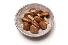 Bowl of Shitake Mushrooms Royalty Free Stock Photography