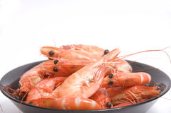 Bowl of shrimps Stock Images