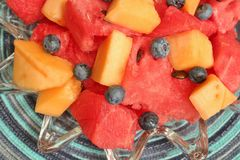 Bowl of sliced watermelon, blueberries, and cantaloupe Royalty Free Stock Photo