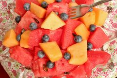 Bowl of sliced watermelon, blueberries, and cantaloupe. A bowl filled with chunks of cantaloupe and fresh watermelon with some blueberries Stock Image