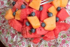 Bowl of sliced watermelon, blueberries, and cantaloupe. A bowl filled with chunks of cantaloupe and fresh watermelon with some blueberries Royalty Free Stock Image