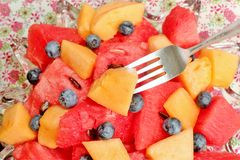Bowl of sliced watermelon, blueberries, and cantaloupe Royalty Free Stock Images