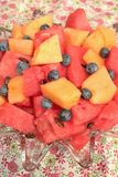 Bowl of sliced watermelon, blueberries, and cantaloupe Stock Photos