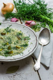 Bowl of soup with dill cucumber Royalty Free Stock Image