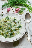 Bowl of soup with pickled cucumbers Royalty Free Stock Photography