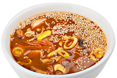 Bowl of Soup whith sesame Royalty Free Stock Photography