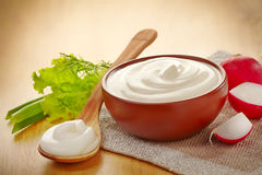 Bowl of sour cream Royalty Free Stock Photo