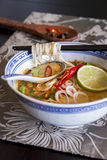 Bowl of spicy Asian soup with noodles Royalty Free Stock Image