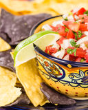 Bowl of spicy salsa and corn chips Royalty Free Stock Photos