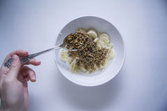 Bowl of sprouts. Germs in a plate, healthy live food photo with copy space for text Stock Images