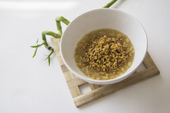 Bowl of sprouts with green bamboo Stock Images