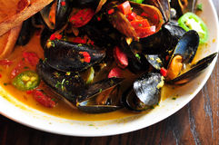 Bowl of Steamed Mussels Royalty Free Stock Photography