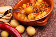 Bowl With Stew Stock Photography