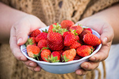 Bowl of strawberries Stock Image