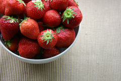 A Bowl of Strawberries. Fresh strawberries in a bowl Royalty Free Stock Photography