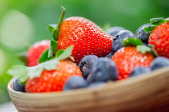 Bowl of Strawberries and Blueberries Stock Photo