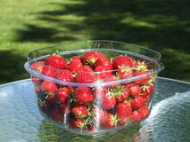 Bowl of strawberries Royalty Free Stock Images