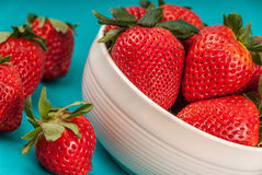 Bowl of strawberries. Bowl of large strawberries isolated on blue background Royalty Free Stock Images