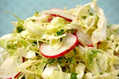 Bowl of summer cole slaw Royalty Free Stock Photos