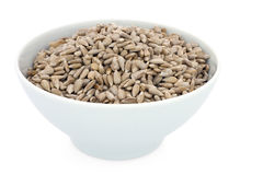 Bowl of Sunflower Seeds Stock Images