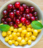 In a bowl sweet cherries and mint leaflets lie. Royalty Free Stock Image