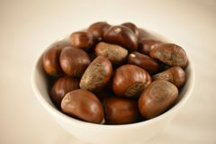 Chestnuts in a white bowl - isolated on white background Stock Photos