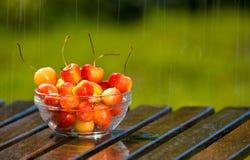 Bowl of Sweet Rainier Cherries in Rain Stock Photos