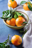 Bowl of Tangerines with leaves Royalty Free Stock Images